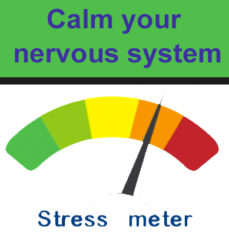 learn to calm your nervous system which is essential for continued health and well-being